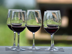 Winemaker Chat: Red wines - Sat, Aug 15 at 12:00pm